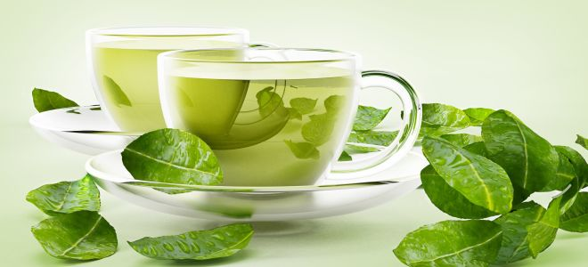 Заменяет ли зеленый чай воду?